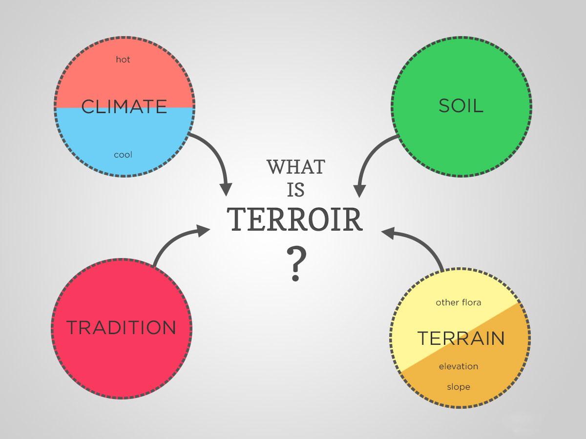 terroir là gì